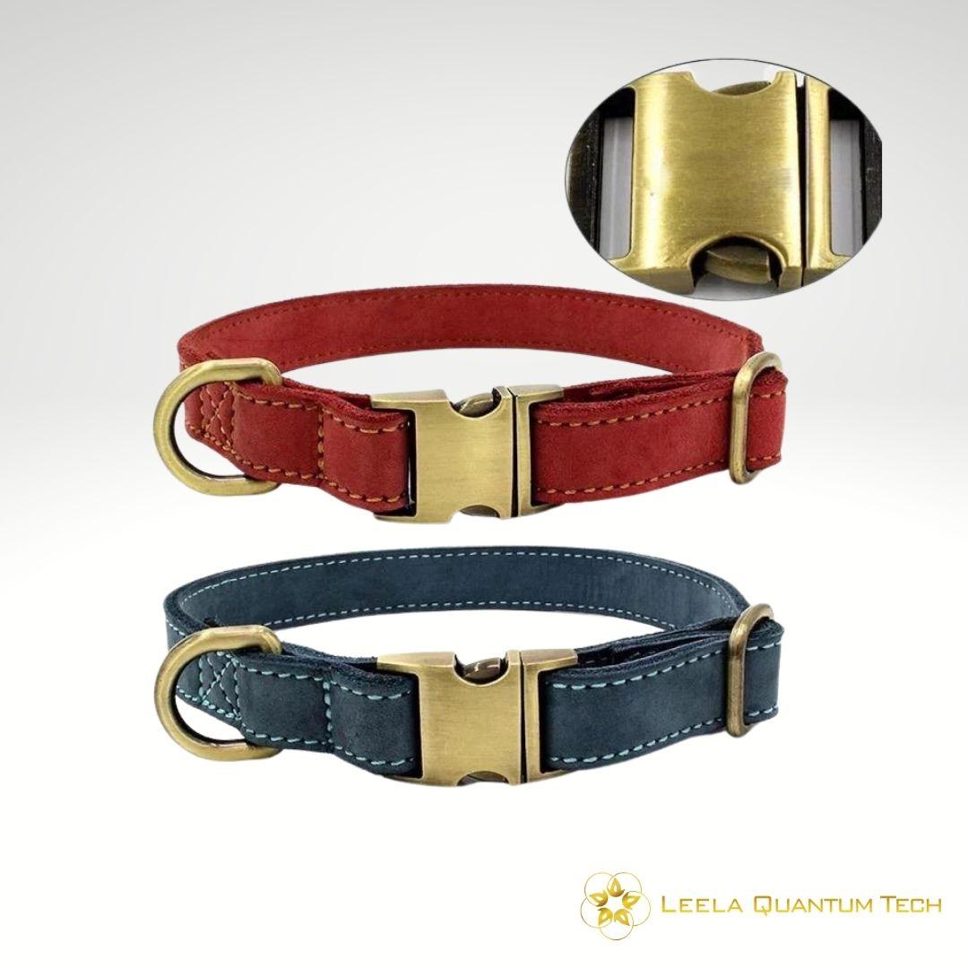Leela-Quantum-dog-collar
