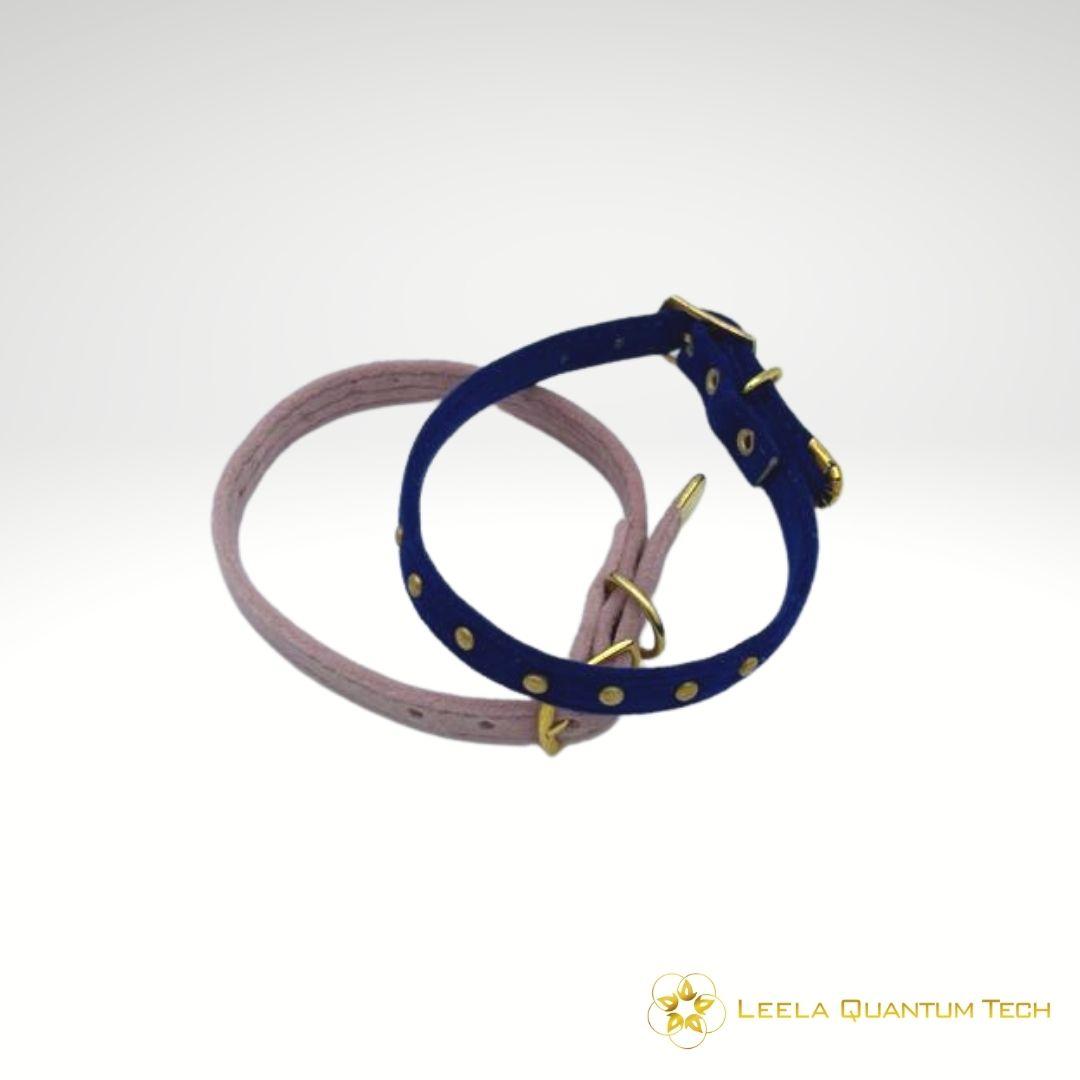 Leela-Quantum-cat-collar